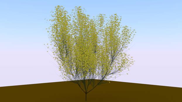 Plant 2