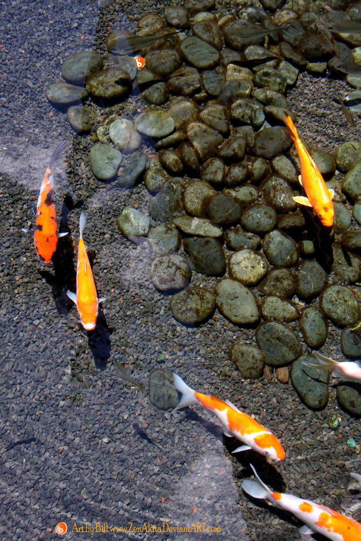 Koi pond wallpaper by zenakita on deviantart for Koi pond zen
