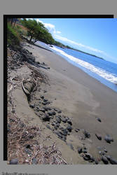 The BEACH is OFF by ZenAkita
