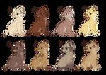 OPEN Lion Cubs 5/8
