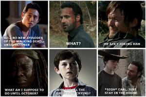 The Walking Dead Meme by YorkeMaster