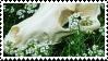 F2U Border Collie Skull Stamp 1 by Rattteeth