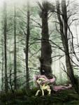 Forest Fog Fluttering