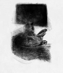 Cat study (Inktober 2019)