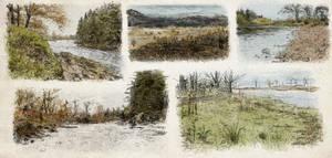 Aberdeen Nature Studies