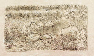 Rock and grass sketch