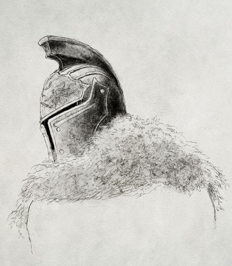 Faraam Helmet and Fur study