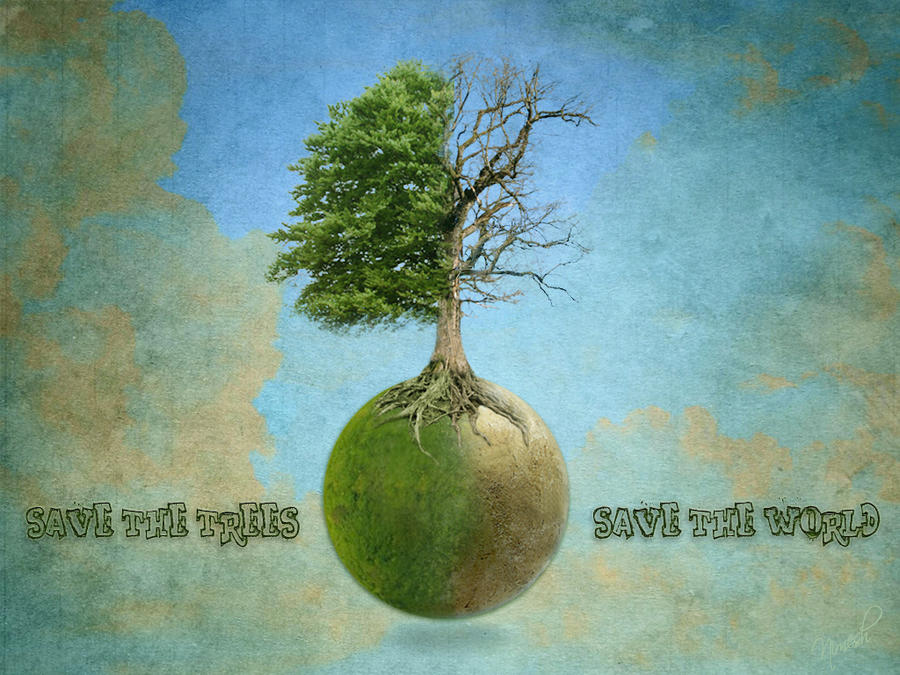 save trees wallpaper 1 - photo #26