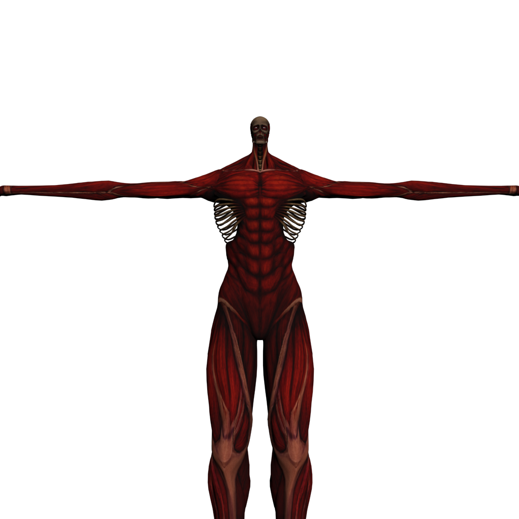 Colossal Titan Armin By Reb1rthdc On Deviantart