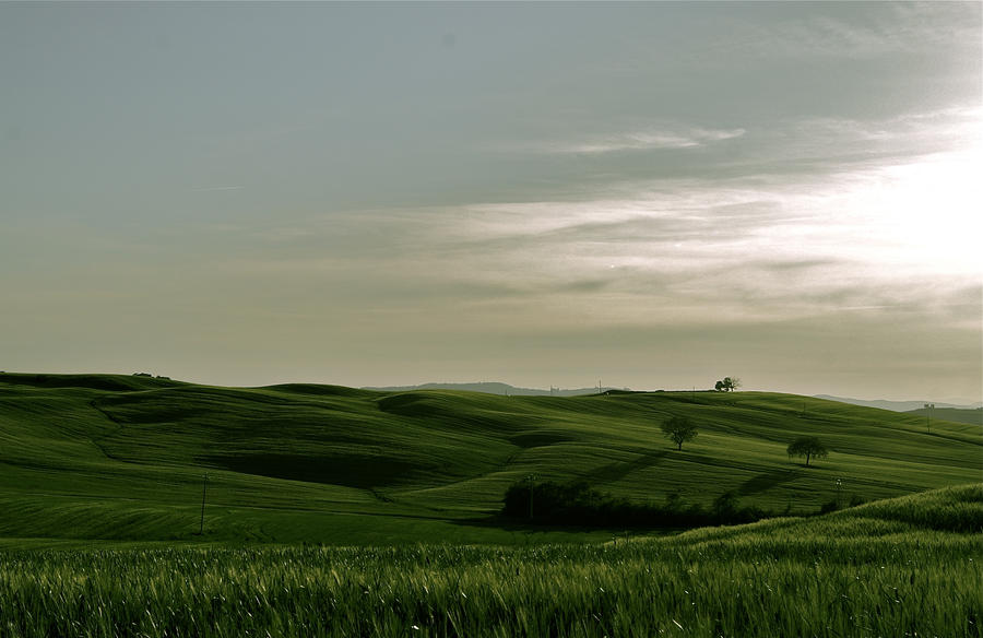 Toscany Fields by Gustavs
