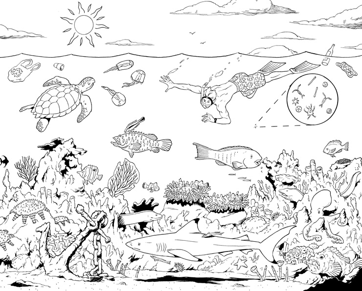 Gallery For gt Coral Reef Drawing