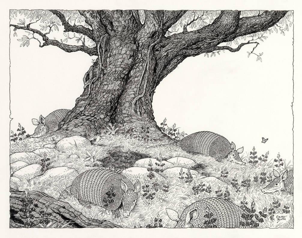 Inktober #27 Oak, Armadillos, and Bluebonnets