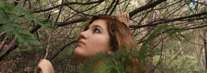Girl in the forest stock