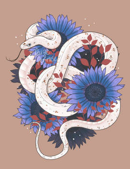 Palmetto Corn Snake with Blue Sunflowers
