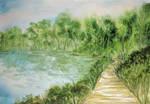 Tifft Nature Preserve by lizziebydesign