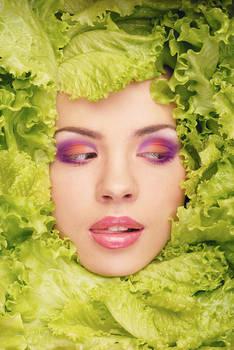 sister lettuce