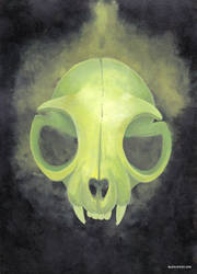 Green cat skull [personal] by Smallblacksticky