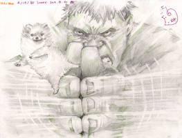 Hulk Swooosh Doggie