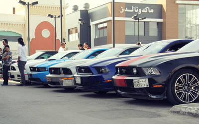 Mustang Club of Saudi Arabia