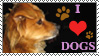 I Love Dogs Stamp by ArtistsforAnimals