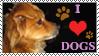 I Love Dogs Stamp by ArtistsforAnimals