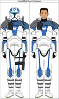 Unidentified Clone Commando