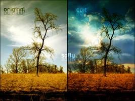 Forest manipulation by soflyfx