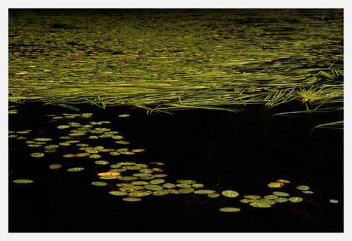 Lac au Canard 2