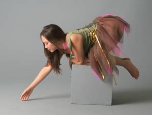 Fairy S -13
