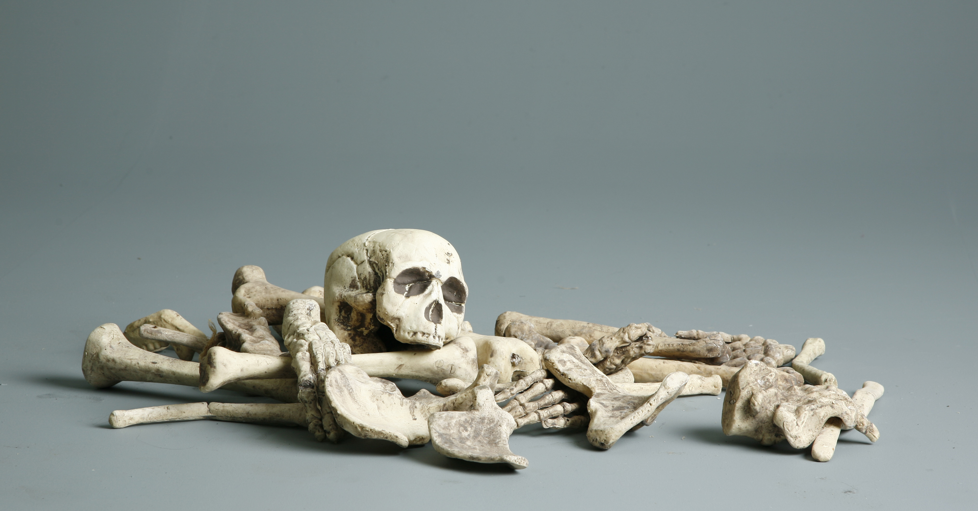 Stock Photo Bones by mjranum stock