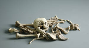 Bones - 2