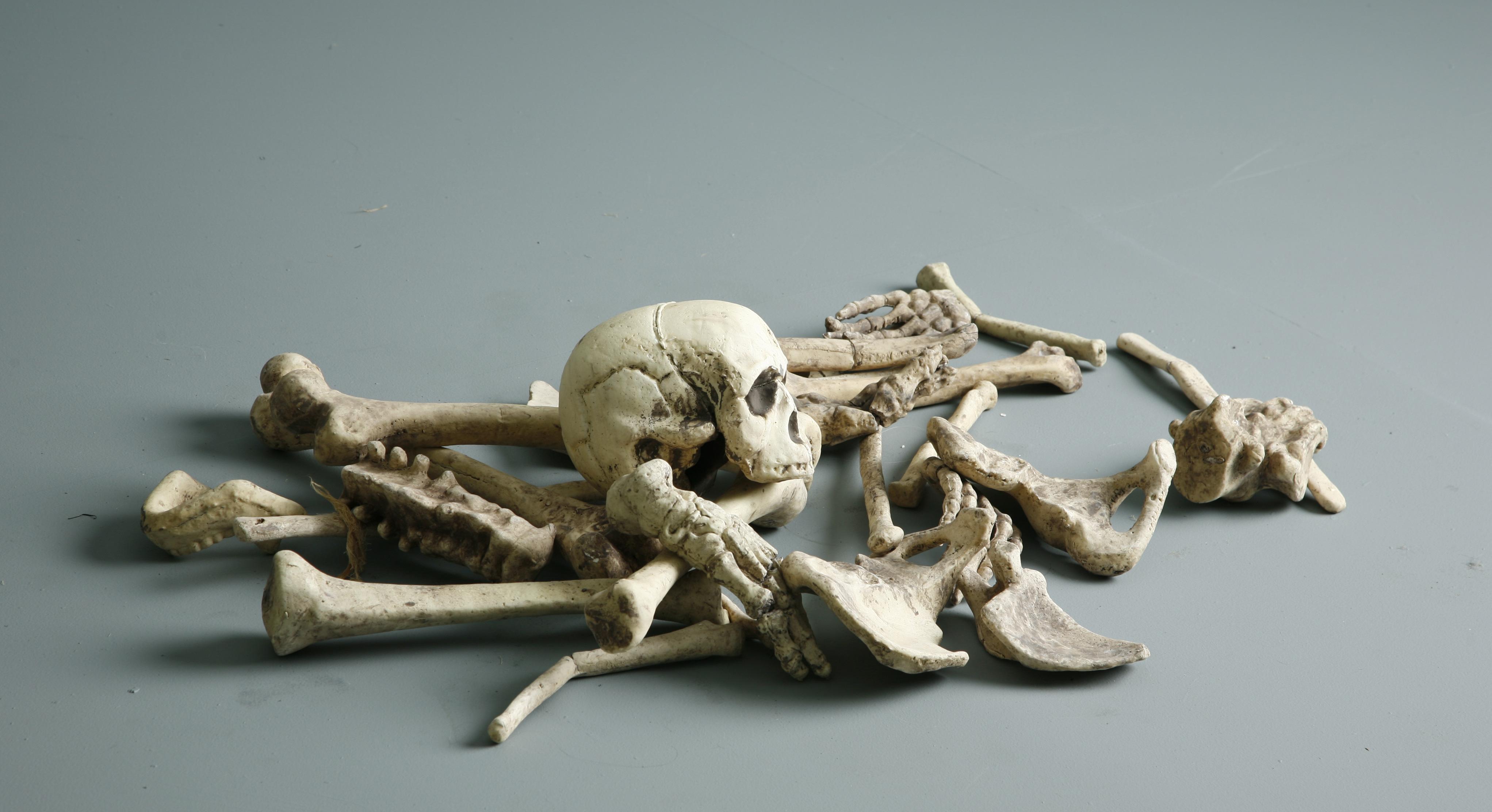 Bones - 2 by mjranum-stock