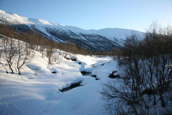 Frozen Stream - 1