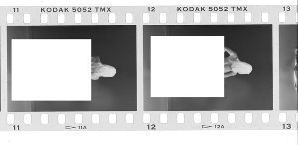 Kodak TMAX 35mm Frame set