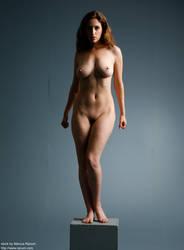 Art Nudes - S - 8 by mjranum-stock