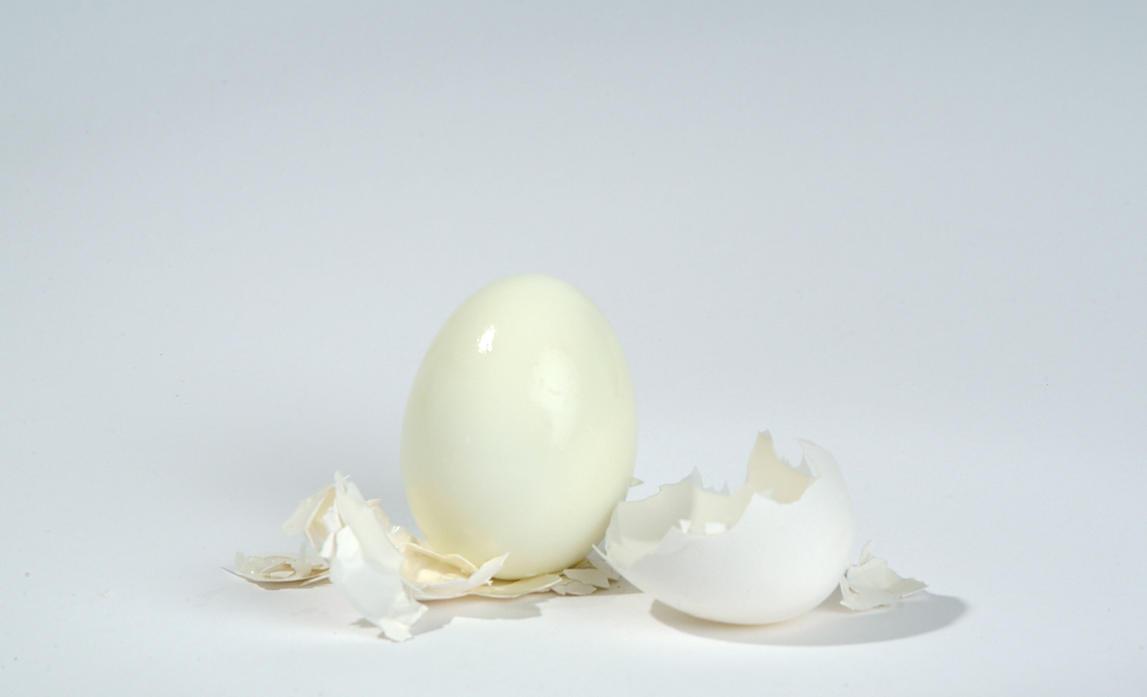Egg by mjranum-stock