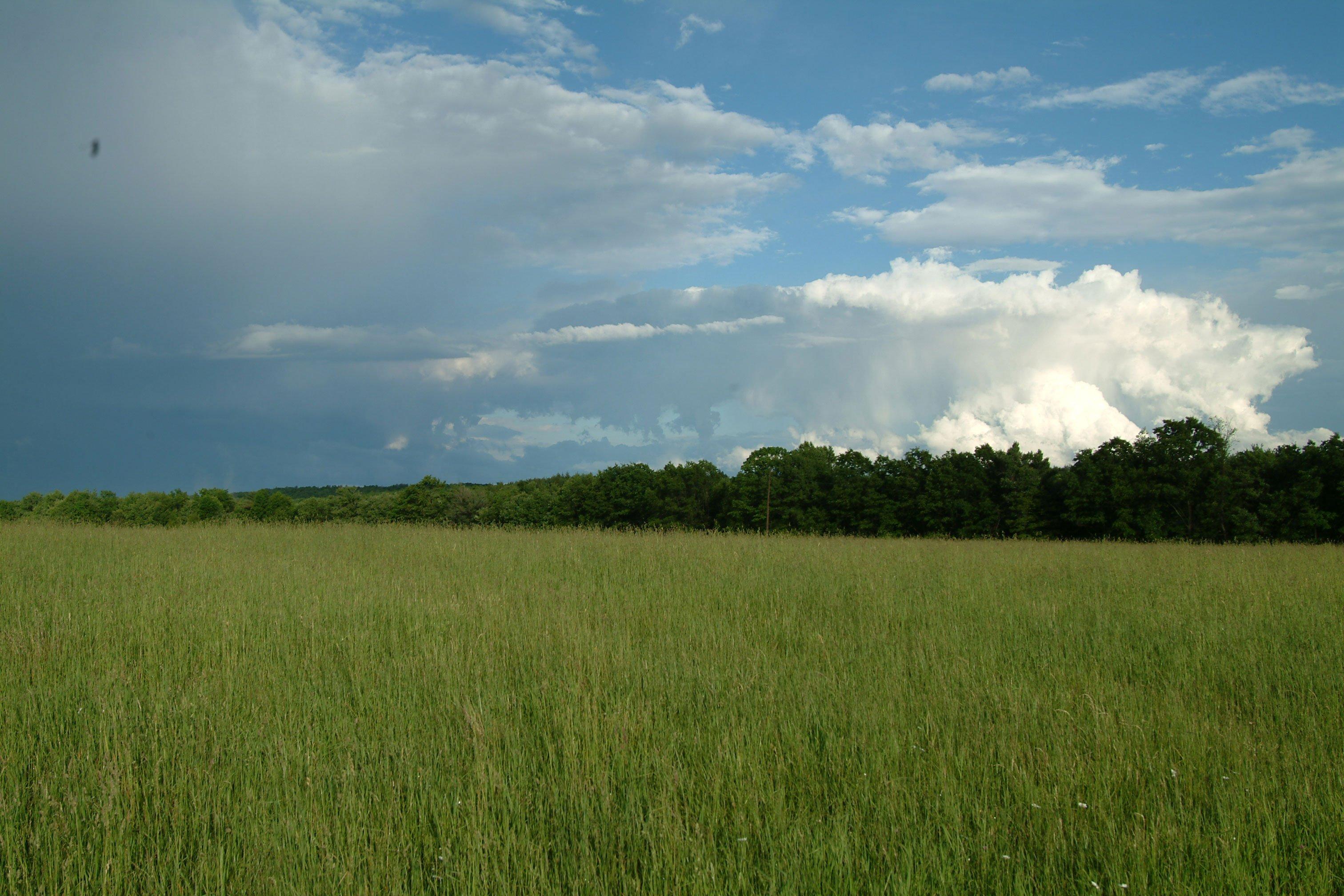Hay Field By Mjranum-stock On DeviantArt