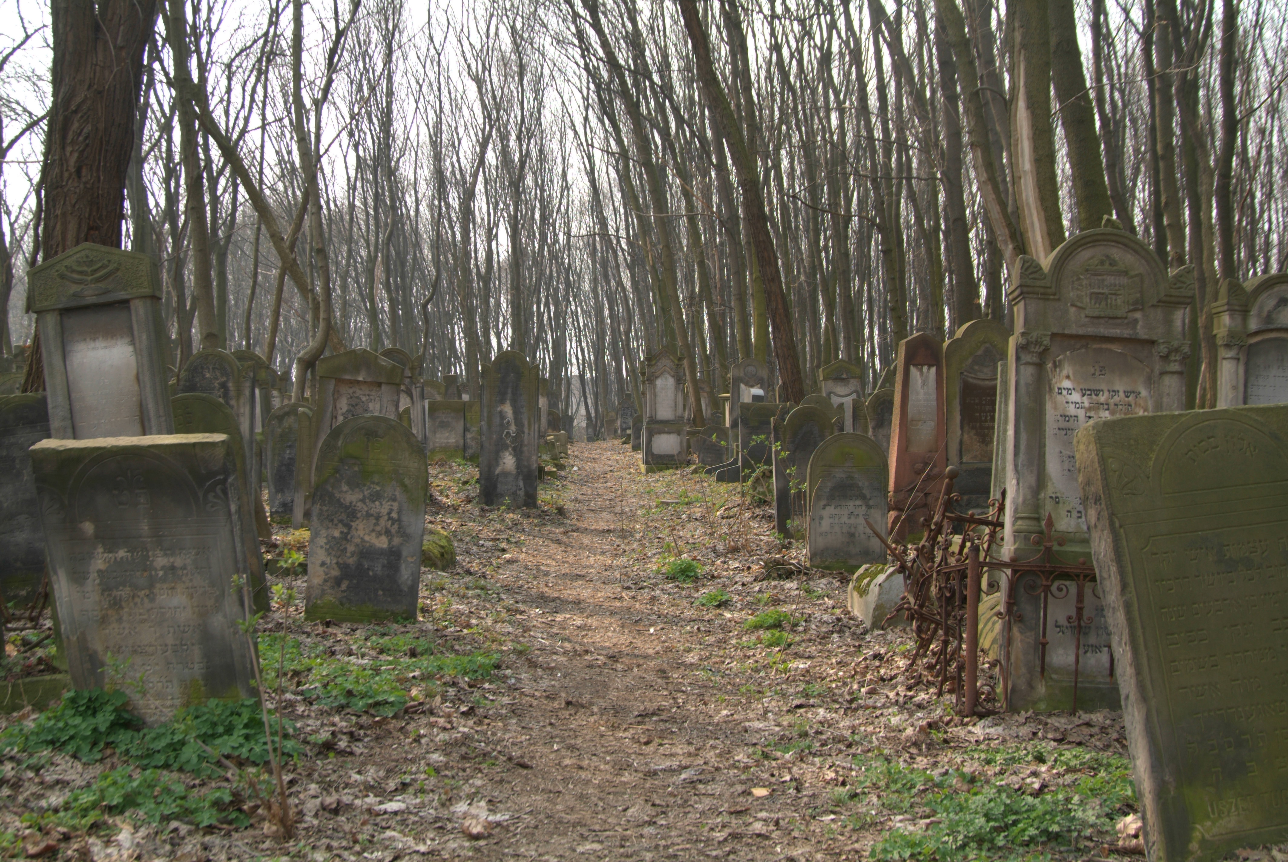 Cemetary - 3 by mjranum-stock