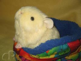 Little Cream Guinea Pig Plush by Morumoto