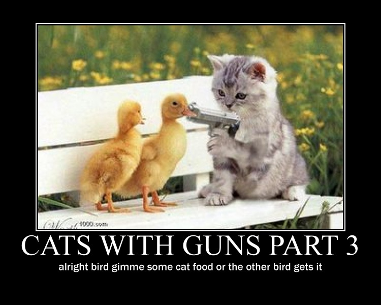 are you a terrorist? Cats_with_guns_part_3_by_metallicaguy14-d48yqw2
