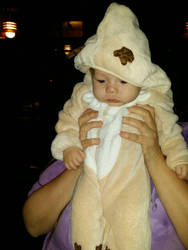 Baby nyan is unimpressed