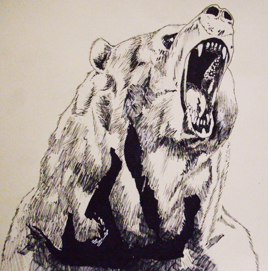 Grizzly Bear Standing Up And Roaring Drawing