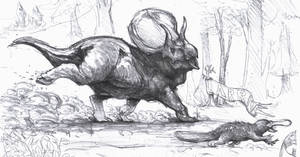 Triceratops and platypus race