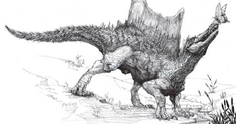 Spinosaurus and butterfly by Zombiraptor