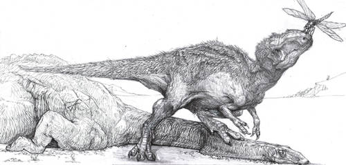 Allosaurus, diplodocus, meganeura by Zombiraptor
