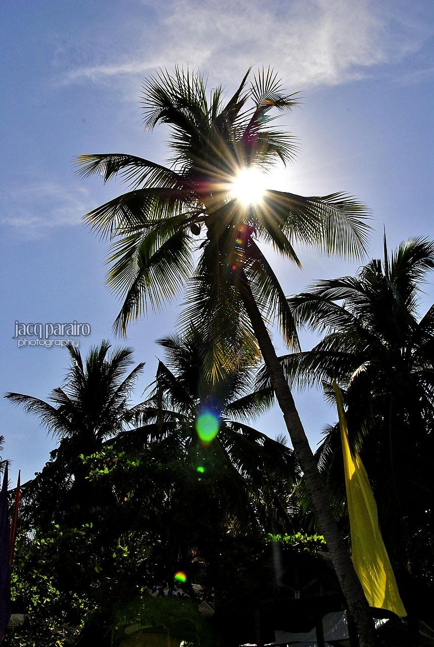 Sunstreaked by isangkilongkamera