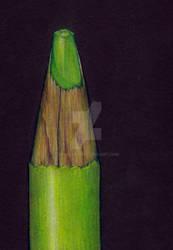 Colored Pencil in Colored Pencil