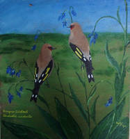 european goldfinches