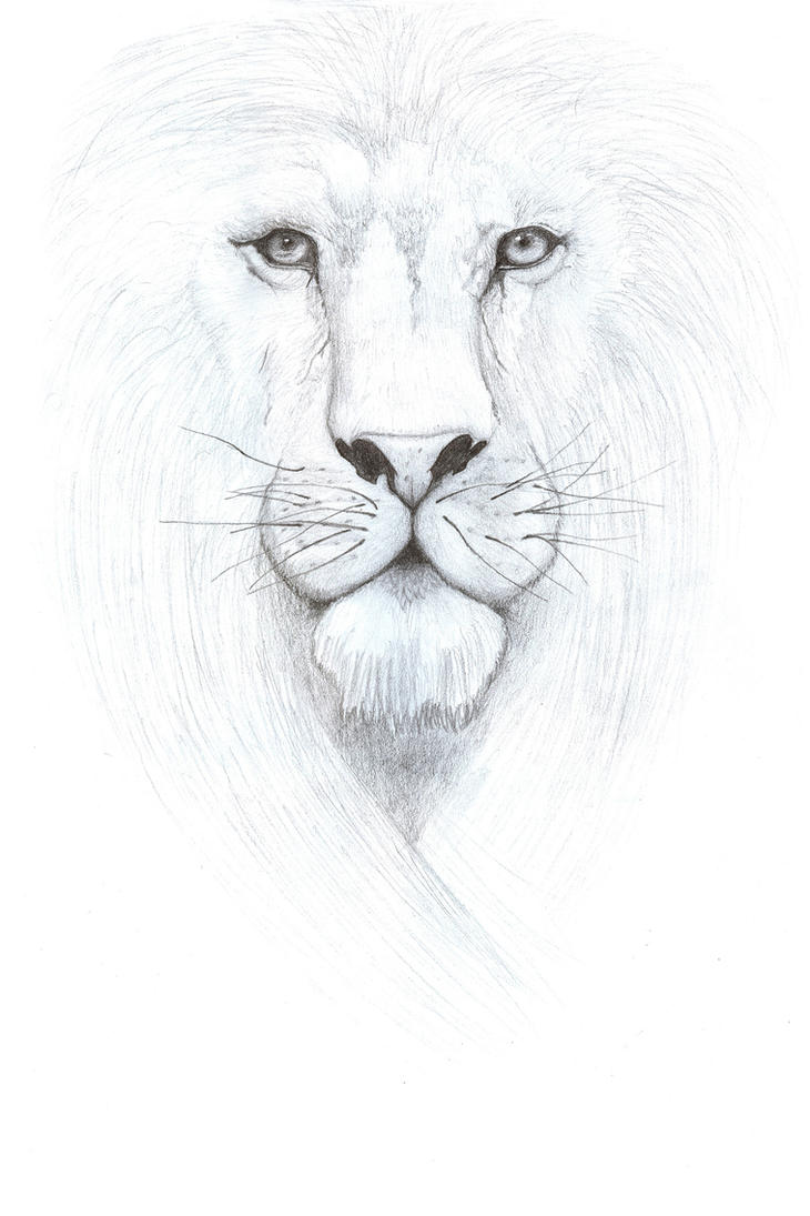 Aslan, King of Narnia by west-fall-