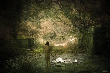 La Claire Fontaine by Janco13